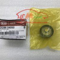 Bi tỳ dây curoa tổng Hyundai i10 Grand, KIA Morning: 25286-04050